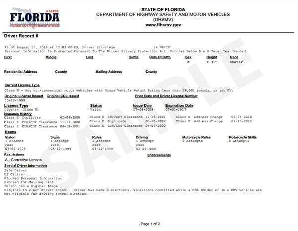 florida driving record sample driving record